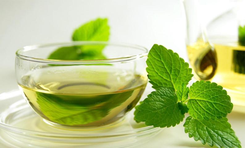 trà bạc hà giảm đau bao tử