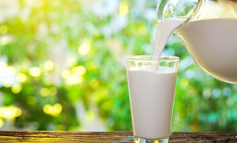 đau bao tử có cần kiêng uống sữa