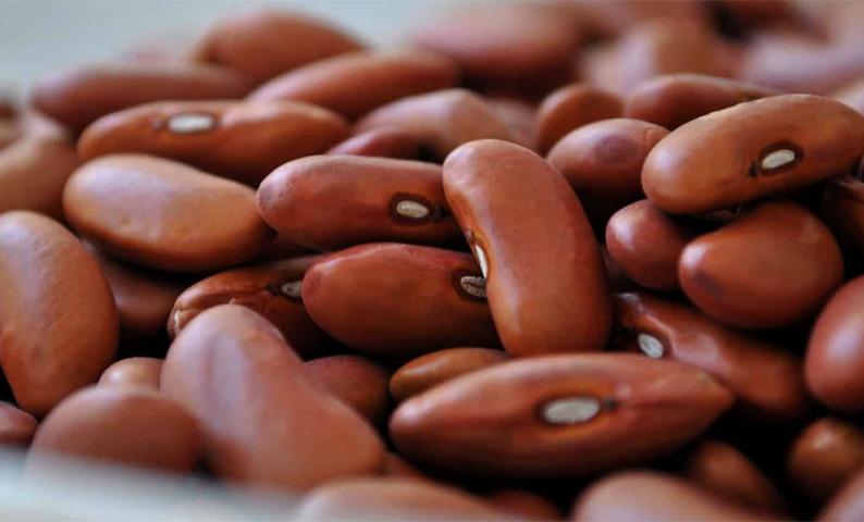 đau bao tử có nên kiêng ăn đậu
