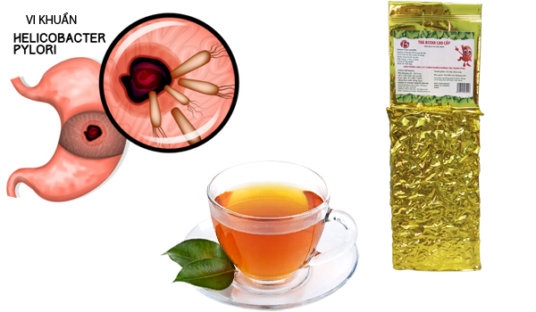 trà bstar trị loét dạ dày khuẩn hp