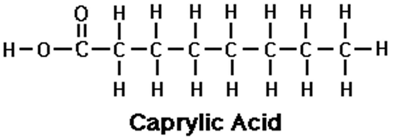 Axit Caprylic La Gi Tac Dung Cach Su Dung